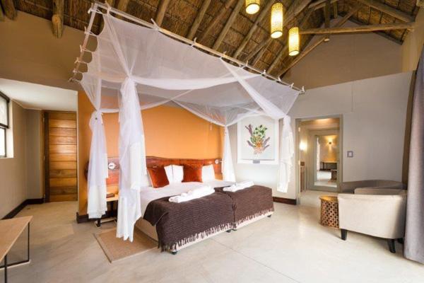 safarihoek lodge autograph safaris. Black Bedroom Furniture Sets. Home Design Ideas